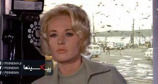سکانس باجه تلفن در فیلم پرندگان(The Birds,1963)