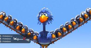 انیمیشن کوتاه برای پرندگان(For the Birds,2000)