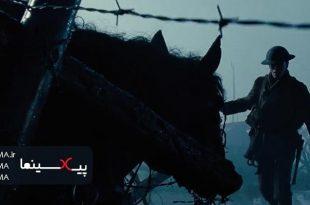 سکانس اسبی در سیم های خاردار در فیلم اسب جنگی(War Horse)